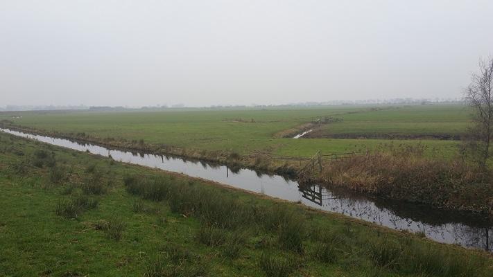 Wandelen over het Groot Frieslandpad langs het Nieuwe Diep