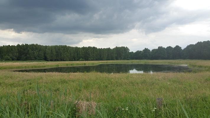 Wandelen over het Peelpad bij De Bus visvijver landgoed Tongelaar
