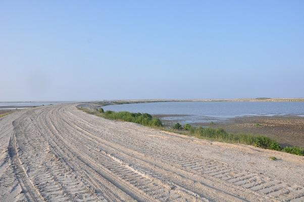 Nieuw land tijdens wandeling van Natuurmonumenten op de Marker Wadden in het Markermeer