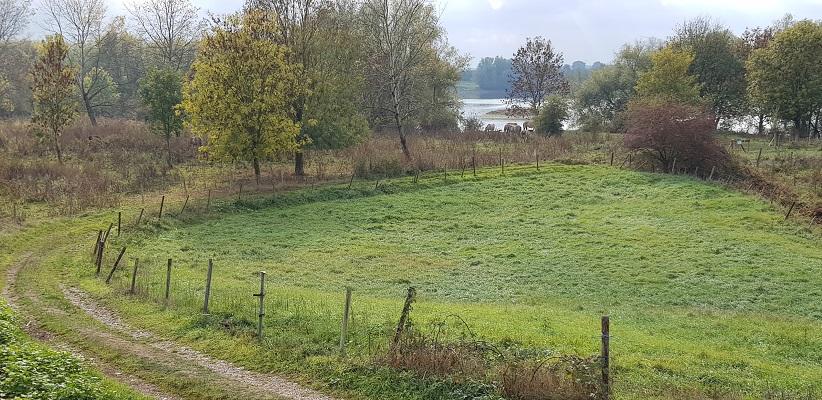 Landschap bij Rekem in België langs de Maas op wandeling over Maaspad van Maastricht naar Berg aan de Maas