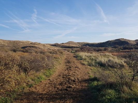 Wandelen over NS-wandeling Noordhollands Duinreservaat