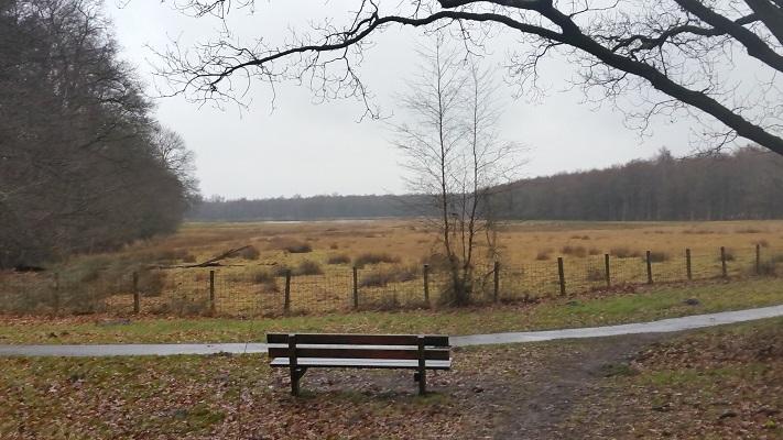 Heidevelden op wandeling over het Elfstedenpad van Oudemirdum naar Sloten