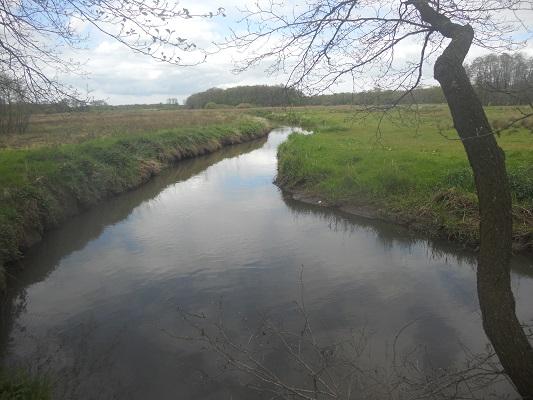 Wandelen over het Groot Frieslandpad langs het Schipborgse Diep