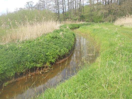 Wandelen over het Groot Frieslandpad in Schipborg
