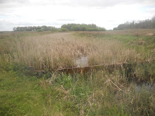 Wandelen over het Groot Frieslandpad bij de Bulten