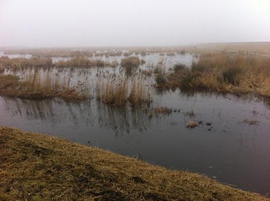 Wandelen over het Groot Frieslandpad bij de Flakke Brekken