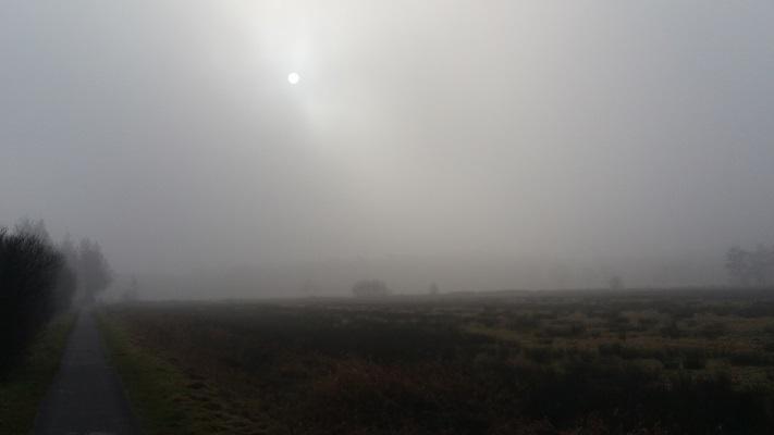 Wandelen over het Groot Frieslandpad over het Koningsdiep in Hemrik
