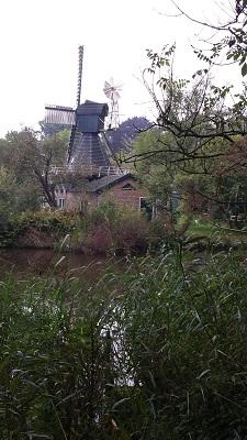 Wandelen over het Groot Frieslandpad bij Molen 40 in Wedderveer