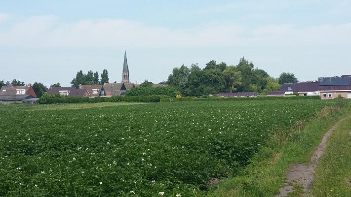 Wandelen over het Groot Frieslandpad met zicht op Oude Pekela