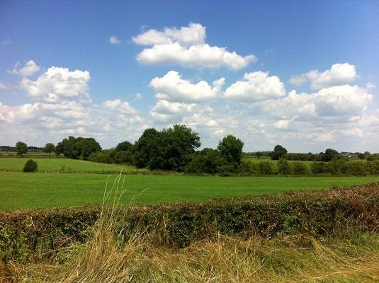 Landschap bij Twello in dagwandeling Twellose Landgoederen over het Hanzestedenpad