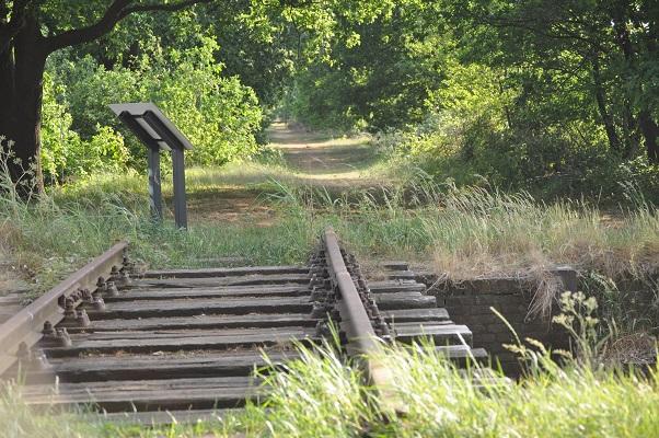 Voormalige spoorlijn Duits Lijntje tijdens wandeling langs riviertje de Leijgraaf van Boekel naar Middelrode