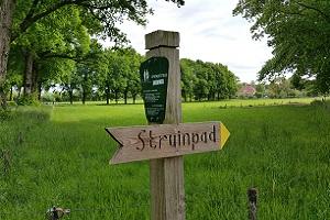 Wandelen over het Oudste Wandelpad van Nederland bij struimpad bij Rhenen