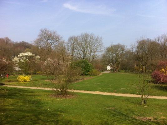 Wandelen over het Oudste Wandelpad van Nederland bij Belmonte Arboretum