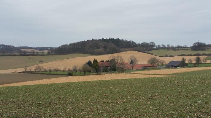 Wandelen over het Peerkepad bij Valkenburg