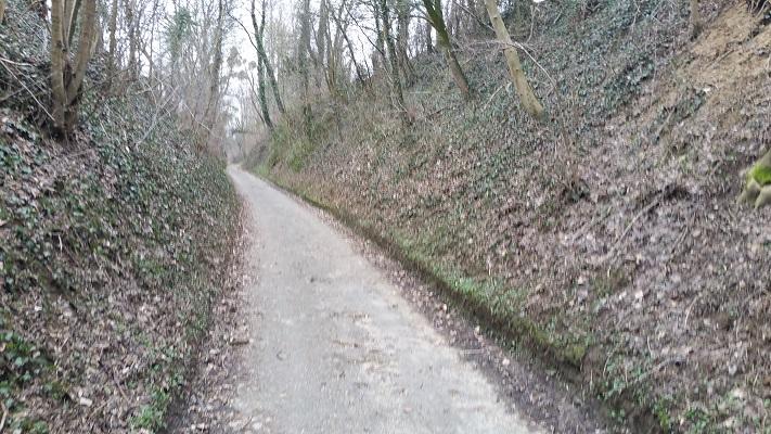 Wandelen over het Peerkepad in de voetsporen van Peerke Donders op holle weg in Broekhoven