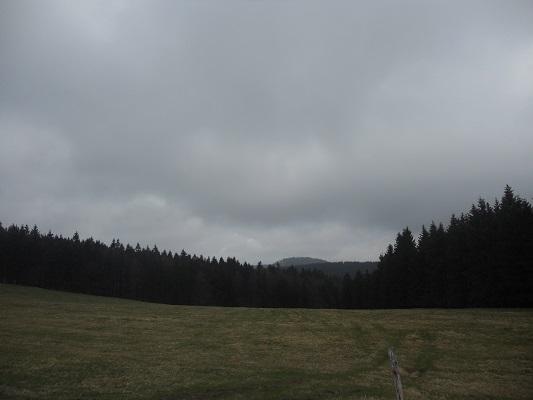 Bosgebied tijdens wandeling van Bahnhof Rennsteig naar Rondell op wandelreis in Thüringen in Duitsland