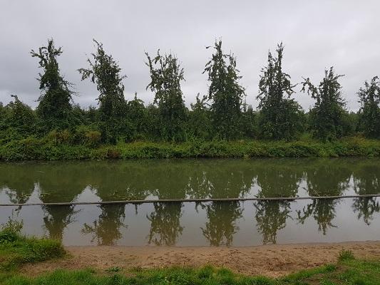Wandelen over het Romeinse Limespad langs de Oude Rijn bij Wijk bij Duurstede