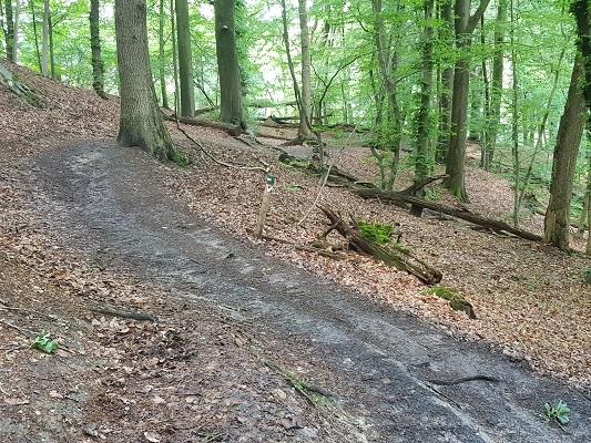 Wandelen over het Romeinse Limespad in Filosofendal in Beek