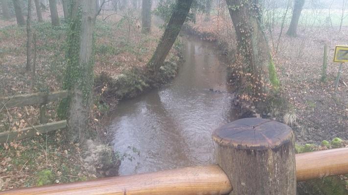 Roovertse Leij op een wandeling over het Roots Natuurpad van Biest-Houtakker naar Gorp