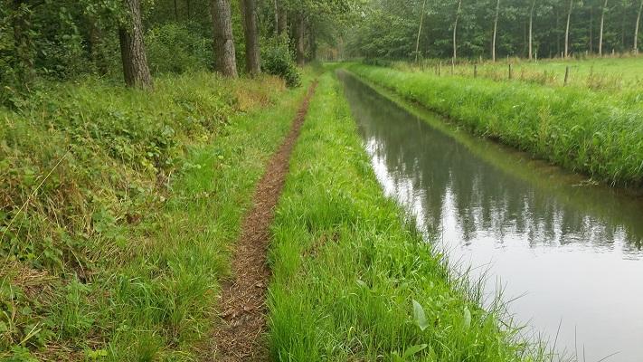 Pad langs beek Houterd op wandeling over het Roots Natuurpad van Schijndel naar Veghel