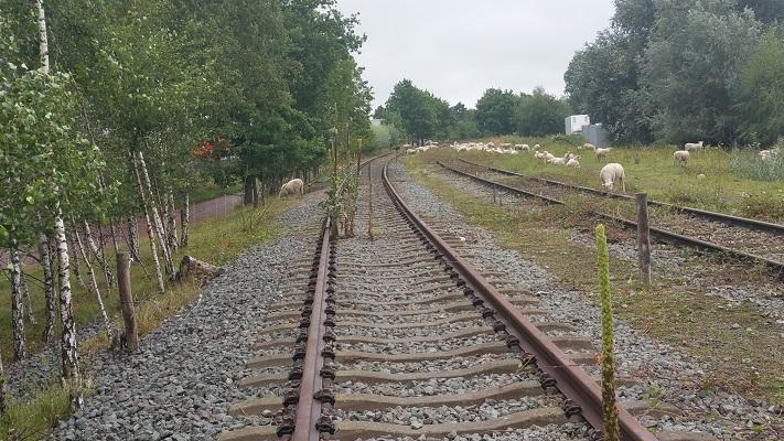 Voormalige spoorlijn Duits Lijntje op wandeling over het Roots Natuurpad van Schijndel naar Veghel