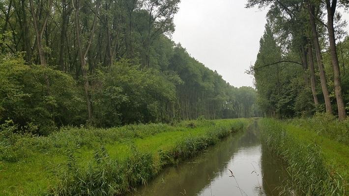 Biezenloop op wandeling over het Roots Natuurpad van Schijndel naar Veghel