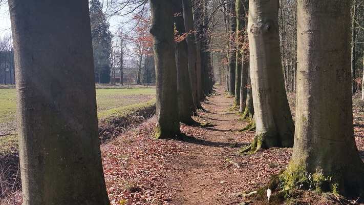 Landgoed Vossenberg op een wandeling over het Roots Natuurpad van Wijhe naar Heerde