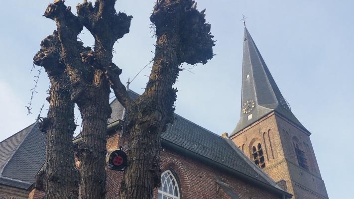 Kerk Wijhe op een wandeling over het Roots Natuurpad van Wijhe naar Heerde