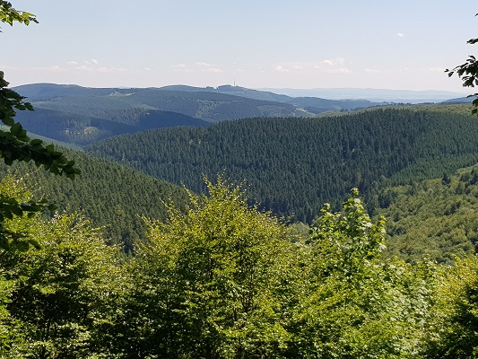 Zicht over boshellingen op wandeling van Winterberg naar Kahler Asten tijdens wandelreis over Rothaarsteige in Sauerland in Duitsland
