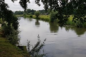Oude Rijn tijdens wandeling over het Utrechtpad