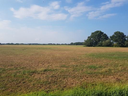 Wandelen over het Westerborkpad van 't Harde naar Elburg bij De Hoge Enk