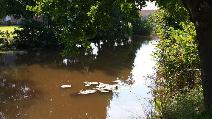 Ruiten Aa op wandeling over Westerwoldepad van Sellingen naar Vlagtwedde
