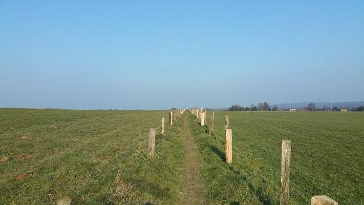 Wandelpad over heuvelachtig landschap tijdens wijnwandeling van Wanda Catsman in Groesbeek