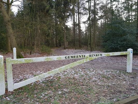 Wilhelminabossen bij Heelsum op een wandeling over Klompenpad Molenbeeksepad bij Wolfheze