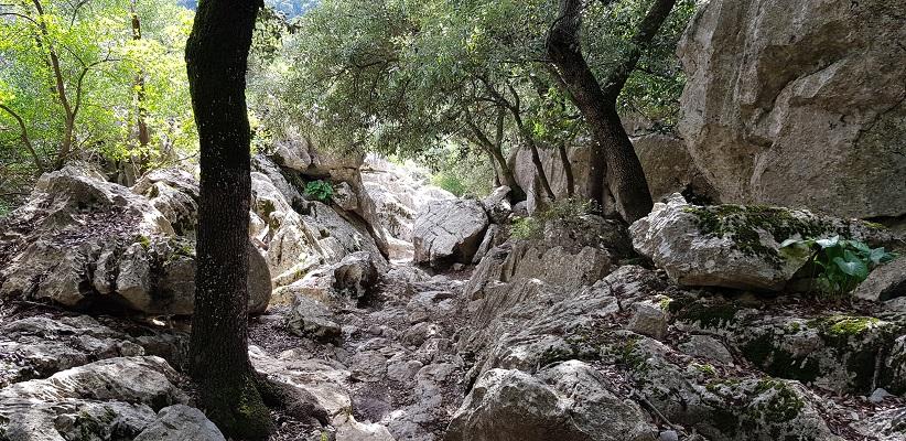 Rotspartijen bij klooster Lluc op wandelvakantie in Tramuntanagebergte op Spaans eiland Mallorca