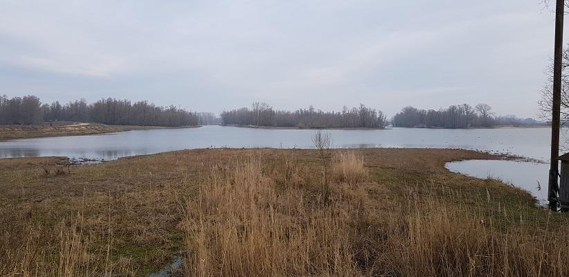 Waterplas uiterwaarden op IVN-wandeling door de Millingerwaard