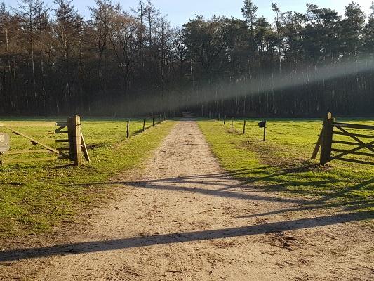 Landgoed Groeneveld bij Hoeve Ravenstein tijdens een NS-wandeling Landgoed Groeneveld van Baarn naar Hilversum