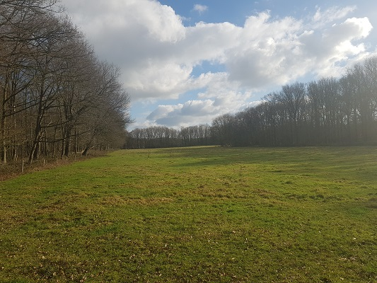 Weiland IVN-wandeling Zevenhutten bij Cuyk