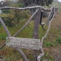 Een wandeling van El Cercado naar Laguna Grande en Chipude op de parel van de Canaren La Gomera