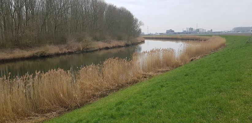 De Donge op een wandeling over de Zuiderwaterlinie van Oosterhout via Geertruidenberg naar Hooipolder