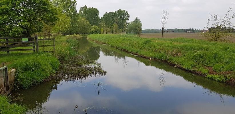 Wandelen over het Peelpad van Altweerderheide naar Stramproy langs de Aabeek