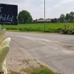 Wandelen over het Peelpad van Altweerderheide naar Stramproy bij aspergeverkoop in Stramproy