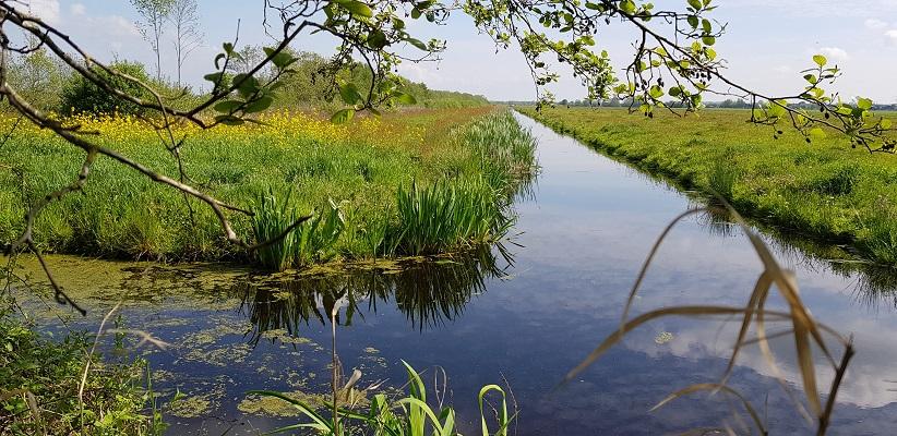 Wandelen over het Romeinse Limespad van Driebruggen naar Woerden