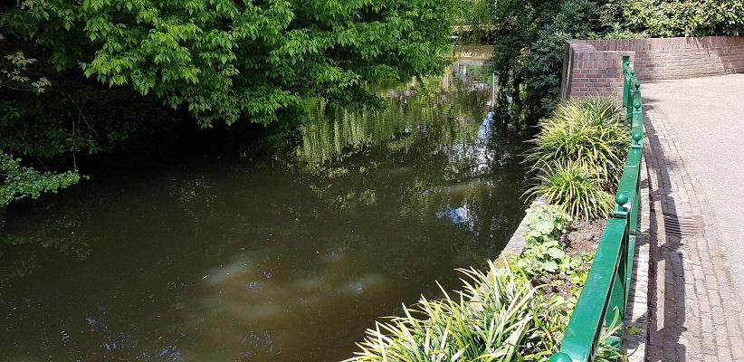Wandeling van Gegarandeerd Onregelmatig over het Parkstadpad van Wandelen buiten de binnenstad van Eindhoven langs de Dommel