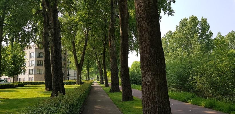 Wandeling buiten de binnenstad van Eindhoven over het Gestelpad