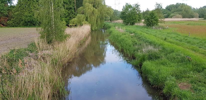 Wandelen buiten de binnenstad van Eindhoven over het Tongelrepad bij de Kleine Dommel
