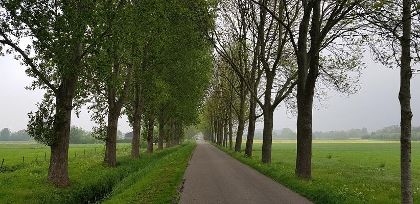 Wandeling over de Zuiderwaterlinie van Hooipolder naar Waalwijk