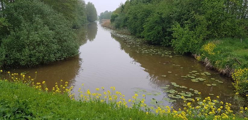 Wandeling over de Zuiderwaterlinie van Hooipolder naar Waalwijk langs de Donge