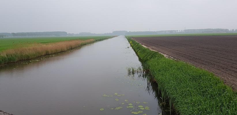 Wandeling over de Zuiderwaterlinie van Hooipolder naar Waalwijk via voetveer naar Slot Loevestein