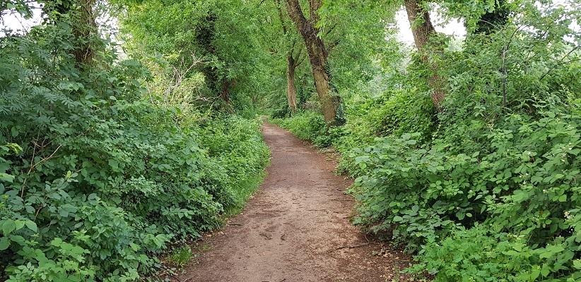 Historische wandeling Heemkunde Bakel